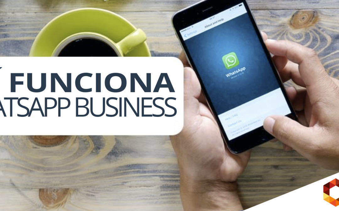 WhatsApp Business para empresas en Bolivia